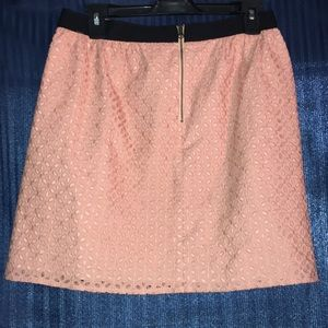 Ann Taylor Loft light pink embroidery skirt size 4